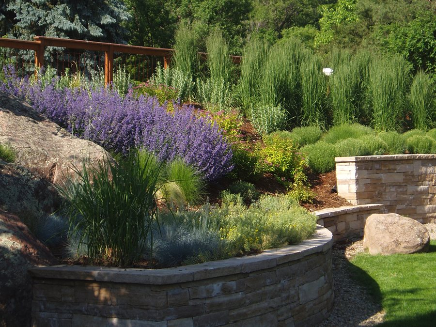 What are the Top Xeriscaping Designs